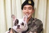 Ca sĩ Si Won (Super Junior) xin lỗi vì để chó cưng cắn chết người