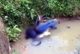 Nghệ An: Hoảng hồn phát hiện thi thể người đàn ông dưới cống nước