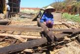 Hà Tĩnh: 667 hộ nghèo sẽ được hỗ trợ làm nhà tránh lũ