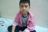 Hà Tĩnh: Bố mẹ khóc nghẹn xin cứu con trai mắc hai bệnh hiểm nghèo