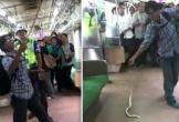 Giết rắn trên tàu điện, người đàn ông Indonesia trở thành 'người hùng'