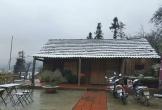 Thị trấn Sa Pa chìm trong gió rét, xuất hiện băng giá