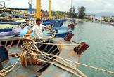Chủ 19 tàu vỏ thép hư hỏng yêu cầu bồi thường hơn 45 tỷ đồng