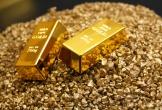 Giá vàng hôm nay (13/12): Dò đáy 5 tháng
