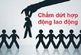 Thanh Hóa chấm dứt 3.015 hợp đồng lao động có sai phạm