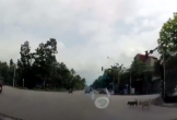 Clip 3 chú chó cùng đợi đèn đỏ mới sang đường gây sốt mạng xã hội