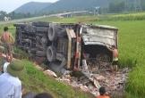 Hà Tĩnh: Xe container nổ lốp, lao xuống ruộng lúa ven quốc lộ 1A