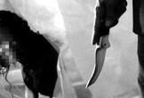 Sinh viên ngoan hiền trở thành kẻ cuồng sát sau 108 lần tỏ tình thất bại