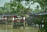 Tạm giữ tài xế điều khiển xe ben gây sập cầu ở Sài Gòn