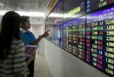 Thị trường chứng khoán tăng trưởng mọi mặt