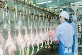 Thêm 3 Cty của Việt Nam được phép XK thịt gà và vỏ xúc xích sang thị trường Nhật Bản