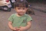 Cho rằng con gái 2 tuổi bị bắt cóc, mẹ trẻ ở Hà Tĩnh cầu cứu khắp nơi