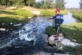 Sống khổ vì nguồn nước ô nhiễm ở Hà Tĩnh