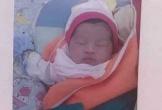 Bé gái sơ sinh bị bỏ rơi ở gốc cây táo ven đường