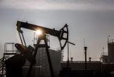 Giá dầu xuống mức thấp nhất một năm