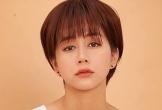 An Nguy tiết lộ Cát Phượng dàn xếp scandal yêu Kiều Minh Tuấn