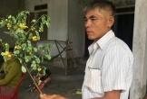 Vợ tử vong nghi do hái lá cây trong vườn uống ở Hà Tĩnh: Người chồng cũng đã tử vong