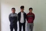 Vũ Quang: Bắt giữ nhóm đối tượng trộm trâu bò