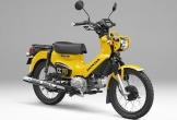 Honda ra mắt