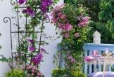 Những góc thư giãn được trang trí bằng hoa đẹp ngất ngây tại nhà