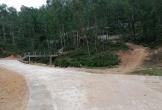 Thị xã Hồng Lĩnh, tỉnh Hà Tĩnh: Cấp hàng ngàn m2 đất rừng phòng hộ cho gia đình cán bộ nghỉ hưu xây nghĩa trang gia đình