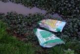 Hà Tĩnh: Những cánh đồng ngập…rác thải