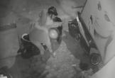 Cẩu tặc cướp chó Alaska, kéo lê chủ nhà 10 m