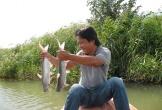 Nông dân miền Tây săn cá bông lau kiếm 2 triệu mỗi đêm