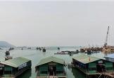 Dự án Bến cảng số 3 Vũng Áng đang đối mặt với thách thức từ 'mực nhảy'!