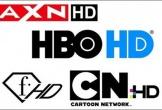 VTVcab tự ý cắt 22 kênh truyền hình trả tiền là vi phạm hợp đồng?