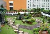 Gia chủ Hà Nội phải dỡ toàn bộ vườn trên mái vì ngấm nước