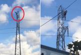 Thanh niên nghi 'ngáo đá' leo lên cột điện cao thế cố thủ nhiều giờ