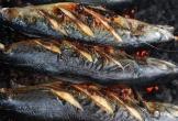 Làng nướng cá biển độc nhất Hà Tĩnh