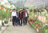Huyện Nghi Xuân - Hà Tĩnh: Phấn đấu về đích sớm huyện nông thôn mới đầu tiên của Hà Tĩnh