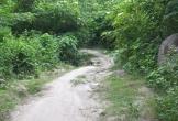 Thanh Hóa: Sự thật về dấu chân hổ gần khu dân cư