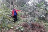 """Huyện Can Lộc, tỉnh Hà Tĩnh: Đã """"tiếp tay"""" bán đất của dân trái pháp luật, còn vi phạm quy trình giải quyết khiếu nại"""