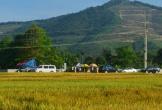Nghệ An: Hàng trăm người theo dõi công tác khai quật tử thi nữ kế toán trưởng