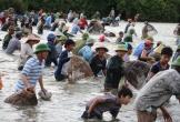 Hàng trăm người dân lao xuống đầm tìm vận may