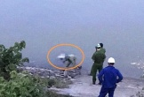 Nghệ An: Hoảng hồn phát hiện thi thể người đàn ông trôi dạt dọc bờ sông Lam