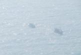 Sóng lớn đánh chìm 2 tàu cá, một thuyền viên mất tích