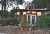 Làm nhà từ gỗ tái chế, đôi vợ chồng chỉ tốn 10 nghìn đôla