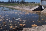 Đình chỉ hoạt động của Công ty CP xây dựng Tiến Đạt về hành vi gây ô nhiễm môi trường