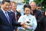 Bang Tasmania e ngại dự án 100 triệu USD của Trung Quốc