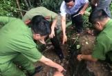 Thông tin bất ngờ về kho báu 3 tấn vàng trong hang đá ở Lạng Sơn