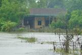 Bão Sơn Tinh đổ bộ, Hà Tĩnh di dời hơn 1000 dân đến nơi an toàn