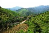 Lập hồ sơ khống, trang trại trái phép nhận hàng chục triệu đồng tiền hỗ trợ ở Hà Tĩnh