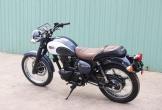 Kawasaki W250 2018 - môtô hoài cổ giá 150 triệu tại Việt Nam