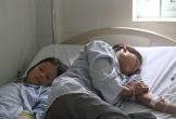 Hà Tĩnh: Bốn người trong gia đình cấp cứu do ăn nấm độc