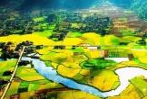 Thung lũng Bắc Sơn đẹp mơ màng mùa lúa chín vàng óng ả