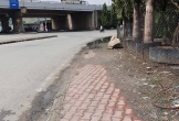 2 thanh niên bị gã xe ôm tấn công trên phố, 1 người chết